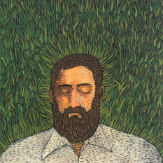 Iron and Wine-Our Endless Numbered Days / Sub Pop