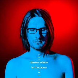 Steven Wilson-To The Bone /  Caroline International
