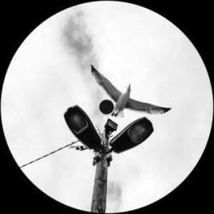 Mike Davis-Anti-mimesis / Brenda