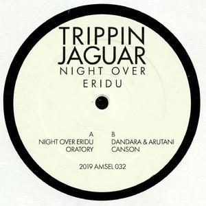 Trippin Jaguar - Night Over Eridu / Amselcom