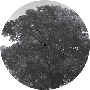 Youandme / The Analog Roland Orchestra-Baumlpe004 / Baum