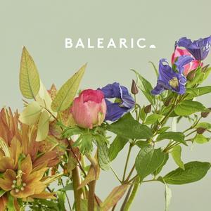 Va-Balearic 2