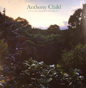 Anthony Child ( Surgeon)-Electronic Recordings From Maui Jungle Vol 1 / Editions Mego