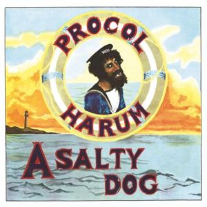 Procol Harum-A Salty Dog / Music On Vinyl
