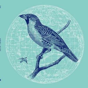 Genius Of Time-Peace Bird Ep / Running Back