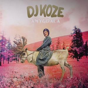 DJ Koze-Amygdala / Pampa